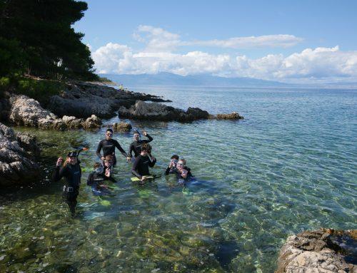 Das Meer – ein faszinierenderes Klassenzimmer kann man sich kaum vorstellen