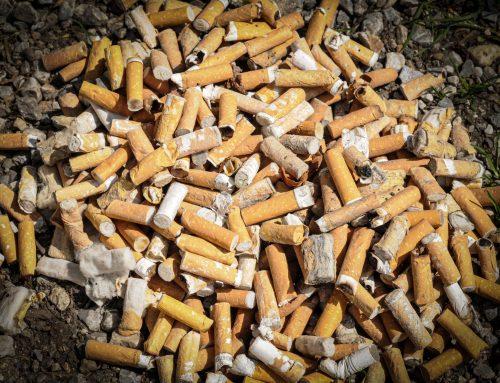 Zigarettenkippen – Die Rheinpaten unterstützen Mare-Mundi und NABU
